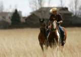 Henry Rios (cq) exercises his horses in a field near a residential neighborhood near Loveland,...