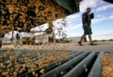 Northeastern Colorado corn farmer Brett Rutledge unloads his final truck of freshly harvested corn...