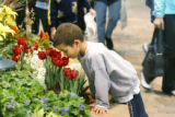 Christopher Craig, 6, of Denver, stops to smel the tulips at the 48th Annual Home and Garden Show...