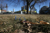 Not much is left at the site of the memorial for the late Denver Bronco Darrent Williams, at the...