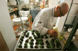 Corridor 44 executive chef Carl Klein (cq) hand dipped strawberries into dark chocolate before...
