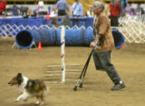 With the aid of crutches Sandy Dupree (CQ) of Longmont, Colo., guides her Shetland Sheepdog Chevy...