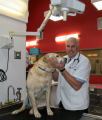 Dr. George Stroberg (cq) in the operating room with patient Gus, Tuesday afternoon, February 27,...