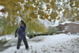 DLM00024   Dave Lopez, 61, knocks the heavy snow from the tree in his front yard in hopes of...