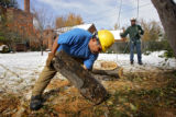 Davey Tree Service employees Chris Drysdale (cq, background) of Watkins and Camerino Chavez (cq,...