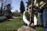 Mark Lauriha (cq) and his wife Becky Lauriha (cq), who have volunteered for Denver Digs Trees for...