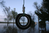 DLM0197  A tire swing hangs in Marilyn Hilzer's flooded yard in front of her  farmhouse at 11056...
