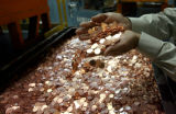 Guillermo Hernandez , of the Public Affairs Office of the Denver Mint, displays a hand-full of...