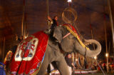 (Loveland, Colo., August 24, 2004) Deylana Fusco rides on of the elephants during a performance of...