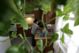 0343 Santiaga Lopez, CQ, 30, of Guatemala, does the dishes at her home in Greeley, Colo.,...