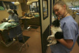 Jennifer Munson, (cq), Certified Veterinary Technician, shows the last of the Nebraska dogs he has...