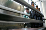 Head Brewer Steve Indrehus (cq) works the production line as the Tommyknocker Brewery  bottles and...