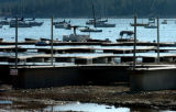 (FRISCO Colo., June 20, 20040)  The docks at Frisco Marina can't be used yet, at this time,...