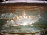 Life Shade, of Orange Va., apples sporting arts images, such as this bonefish, to lampshades. ED...