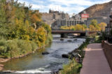 Trees changing color near the Coors Brewery in downtown  Golden Tuesday October 16,2007....