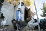DM0009     Rich Vigil feeds his the chickens on his family's small farm, known as Double Vig Farm,...