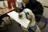 DM0822   Carolyn Griffin's service dog, Lena, holds her ballot before handing it over to election...