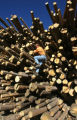 Mark Mathis (cq), President of Confluence Energy, on one of the many stacks of logs, Wednesday...