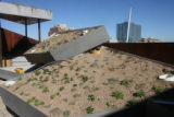 A garden is on the roof  of the new Museum of Contemporary Art, Thursday morning, October, 25,...