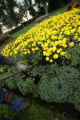 Phillip Rand weeds one of the flower beds that are in full bloom in Washington Park, in Denver,...