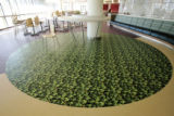 Artwork taken from John Fielder photographs are embedded in the floors of the main cafateria at...