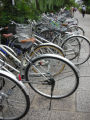 Parked bicycles are lined up along a promenade in Kyoto, Japan. Photo Special to the Rocky/Judith...