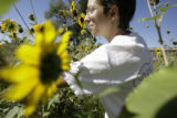 Mary Choate(cq) clips sunflowers on the land she rents in Arvada, Colorado on Wednesday, Aug. 8,...