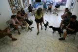 Christine Shedron (cq) teaches _, a black lab belonging to _ _, how to properly follow during...
