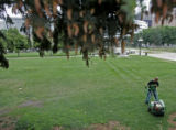 NOT A REAL ASSIGNMENT - DO NOT PUBLISH   A parks employee uses an aerator in Civic Center Park in...