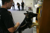 Jefferson County Deputy Sheriff Troy Gardalen(cq) directs Ike, a German Shepherd from the Czech...