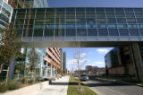 The growing medical facilities of University Hospital. A look at the burgeoning architecture at...