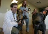 It's business as usual for John Vickers DVM at his Castle Pines Veterinary Clinic as he holds his...
