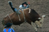 MJM991 Cowboy, Logan Wade of New Castle, Colo. rides Freakshow the bull Thursday August 2, 2007...