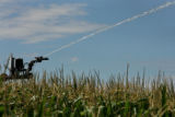 MJM829 A sprinkler sprays water on a corn field owned by Lenz Family Farms outside of Wray, Colo....