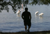 Lee Gallegos (cq), Denver, finds a shady spot to view some pelicans at Sloan's Lake, Thursday...