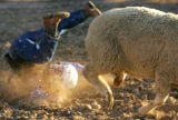 Ty Laudick, 6, ends up tumbling in the dirt while his sheep gallops away in Mutton Busting on the...