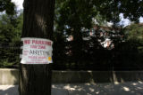 "A ""No Parking"" sign hangs on a tree just outside Barack Obama's house in the Hyde Park..."