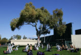 (0579) Pitchers workout under a tree at Colorado Rockies spring training at Hi Corbett Field in...