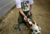(PG0129) Bill Langer, of Broomfield, feeds Rosie, his Cavalier King Charles Spaniel a treat after...