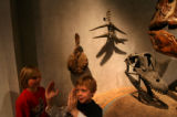 (PG0610) Ethan Beaty (cq), 8, (left) and Alec Elkington (cq), 6, play in the dinosaur exhibit at...