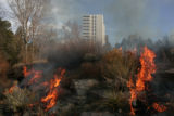 Smoke and flames billow from  a controlled burn of the Plains Garden Wednesday March 12, 2008. ...