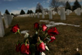 MJM416    Red roses sit among the graves in section S of Fort Logan National Cemetery Wednesday...