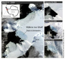 This series of satellite images shows the Wilkins Ice Shelf as it begins to break up. The large...