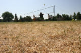 Members of the Denver Waldorf Volleyball Camp, play in the dried up grass at Congress Park, Friday...