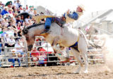 Dave Hoffman, of Elizabeth, rides a bucking bronco in the bareback competition at Rodeo at the...