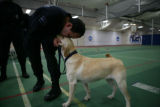 Martin, (cq) a Federal Police Officer from Mexico, reaches down to pet his bomb-sniffing dog Lucy...