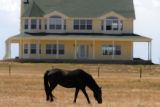 MJM157 A horse grazes in front of the house Friday 07/25/08 that was a scene of a murder suicide...