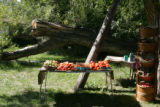 A vegetable and fruit stand is filled with fresh produce for sale at Cure Organic Farms.  As part...