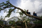 Richard Beardmore, left, and Sarah Shafer sit atop the tree that fell and crushed his brother's...