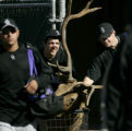 5020 Colorado Rockies' RHP Casey Weathers pushes out a stuffed elks head beacause conditioning...